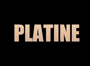 platine_edited.jpg