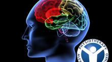 אירוע מוחי קל - לאן עכשיו?