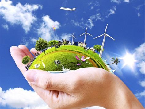 RELATION BETWEEN RIGHT TO POLLUTION FREE ENVIRONMENT AND HUMAN RIGHTS