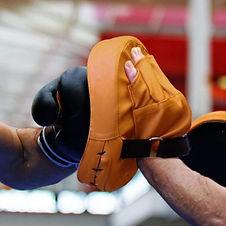 boxing-focus-mitts-target-gloves-4.jpeg
