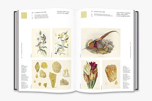 'Nature's Palette' is a Color Reference System From the Natural World