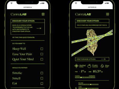 CannaLab Pushes Beyond Cannabis Stereotypes