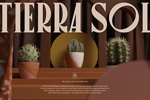 Tierra Sol Is For Plant Killers That Are (Still) Plant Lovers at Heart