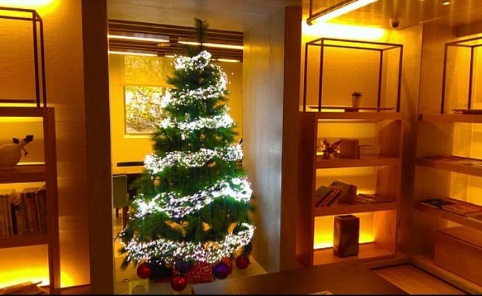 聖誕樹佈置