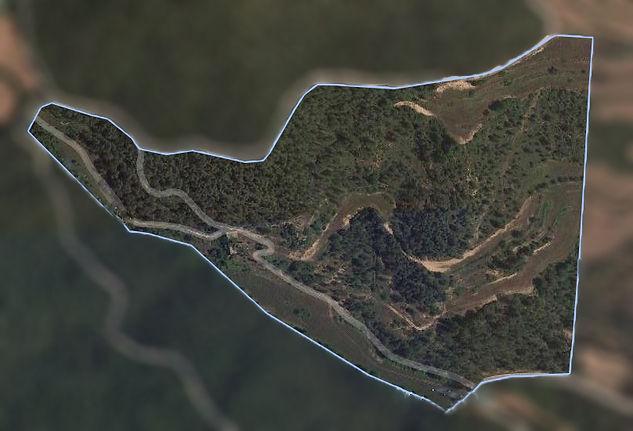 mapa fase 1.jpg