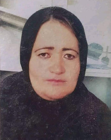 In Memory of Banu Negar