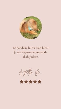 Reviews 21