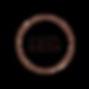 logo arizona (1).png