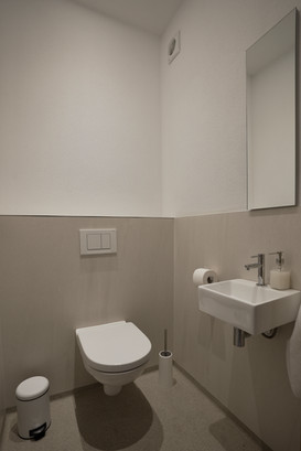 Toilet and wash basin