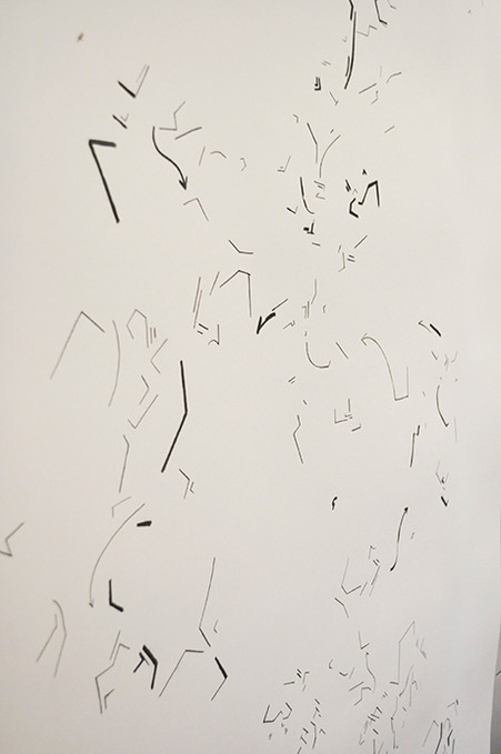 Installation Shot: Scatter Pencil and charcoal on paper.