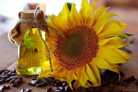 Sunflower oil.jpg