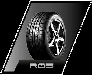 rydanz modelo r05