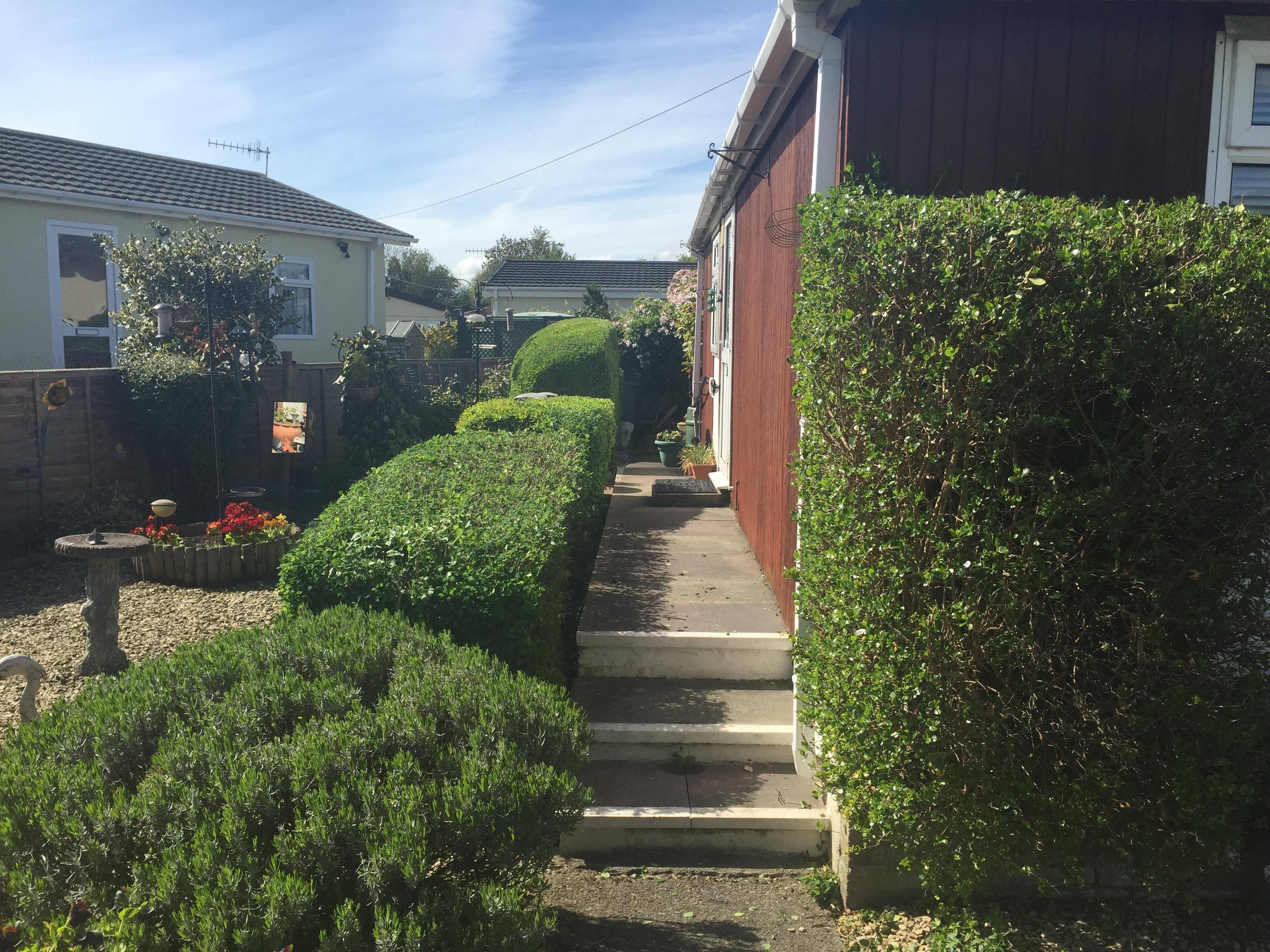 hedge cutting bristol