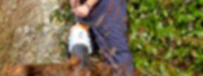 Bristol Gardener