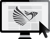 top website and logo design in Durham
