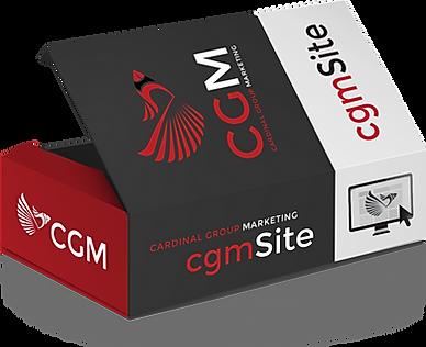 CGM WEBSITE DESIGN | RALEIGH WEBSITE DESIGN|