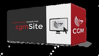 CGM- Web Site | Basic
