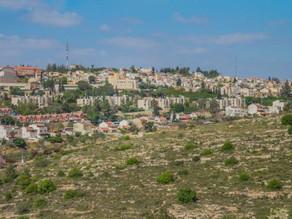 מאבק בהלבנת אוניברסיטת האפרטהייד באריאל