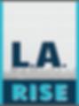 LARISE_logo.png