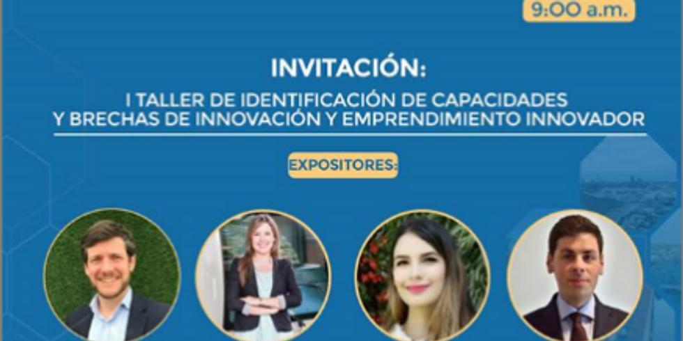 Primer taller de identificación de capacidades y brechas de innovación y emprendimiento innovador