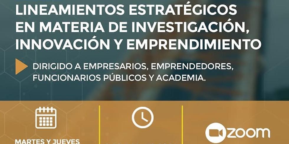 Mesa: Lineamientos Estratégicos en Materia de Investigación, Innovación y Emprendimiento