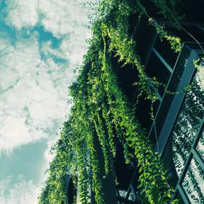 Ten steps towards Singapore Green Mark Platinum (New Building version 2015)