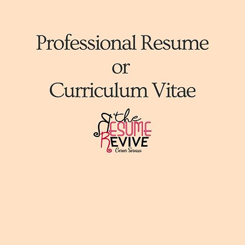 Professional Resume or Curriculum Vitae