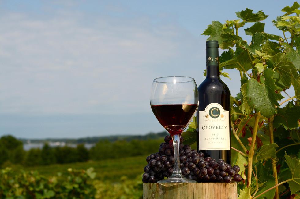 Clovelly Vineyards Riverside Red