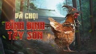 Tại sao gà chọi Bình Định Tây Sơn lại nổi tiếng?