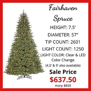 Fairhaven-Spruce-rev.png