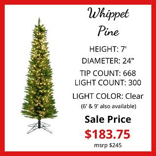 Whippet-Pine-Slim-Rev.png