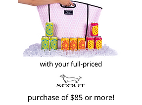 Scout-Gift-With-Purchase.png