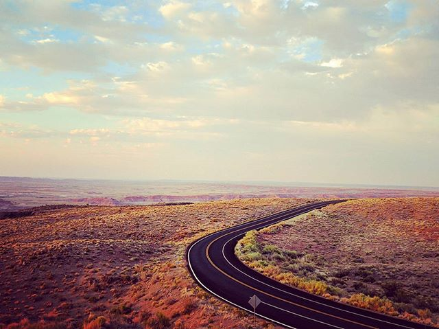 Petrified Forest National Park, Honeymoon Road Trip #honeymoon #roadtrip #petrifiedforest #paintedde