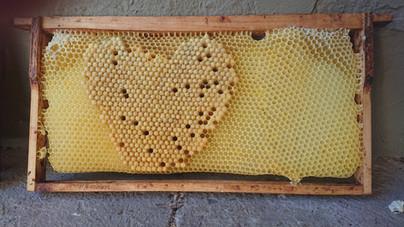 Bee's smart art!