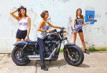 HarleyV2_3892_HDRV3_lo.jpg