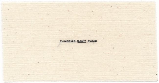 9. Pandemic Don't Panic.jpeg