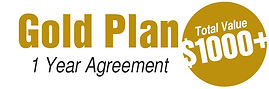 AP_Plans_Gold1000.jpg