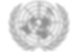 Agencies_Icons_UN.png