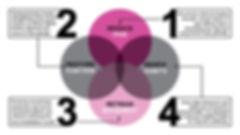 Physio4Pets Slides_72dpi.jpg