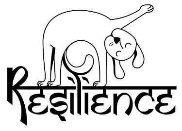 Resilience Dog.jpg