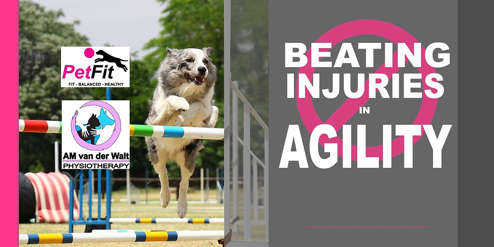 Beating Injuries in Agility