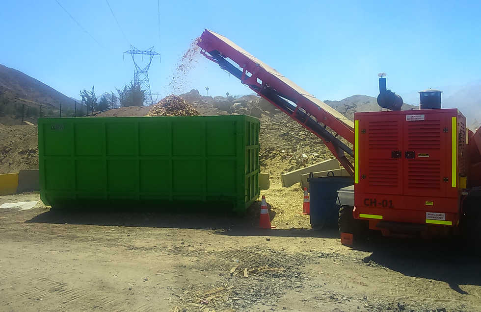 Valorizando la Madera en Biomasa