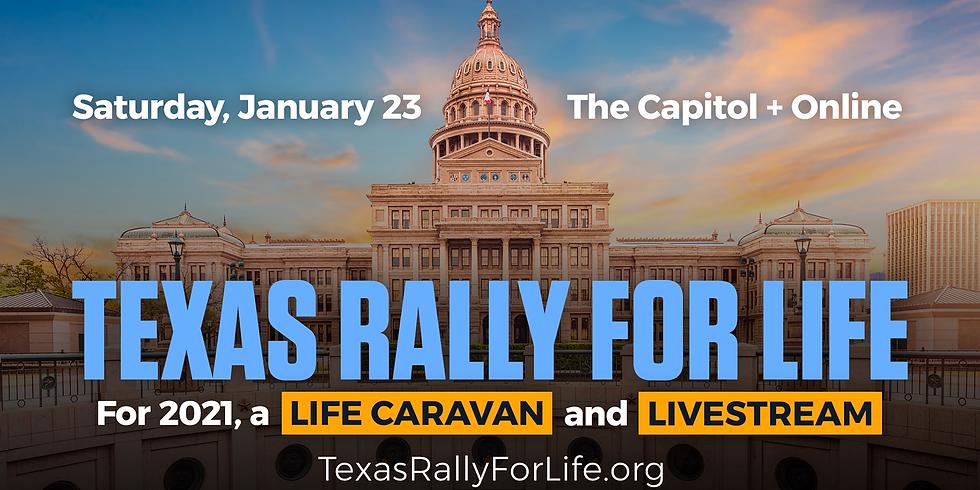 Austin Young Republicans @ Texas Rally for Life Caravan