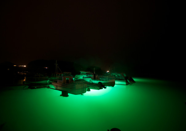 grøn_hav.jpg