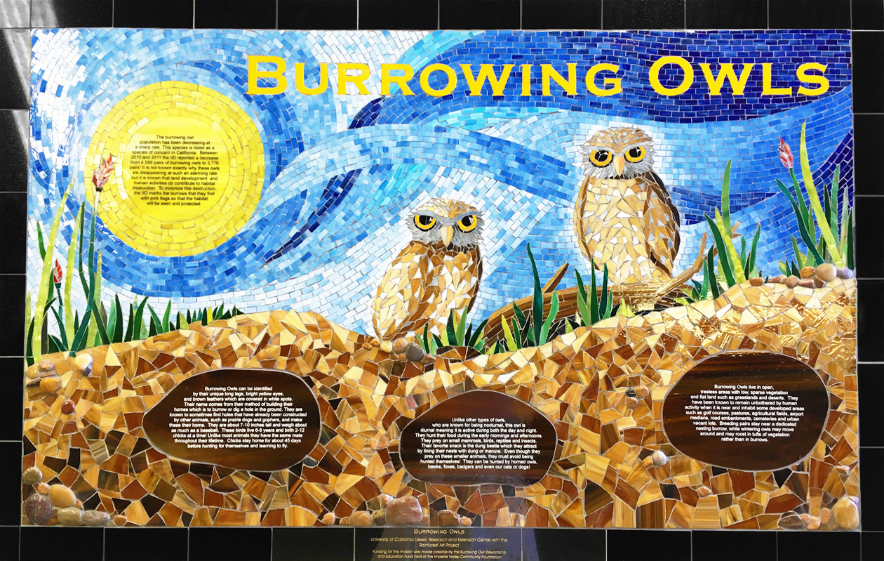 Mosaic owl mural sponsored by UCSD and Rabobank
