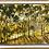 Thumbnail: The Light That Dances on Middle Harbour