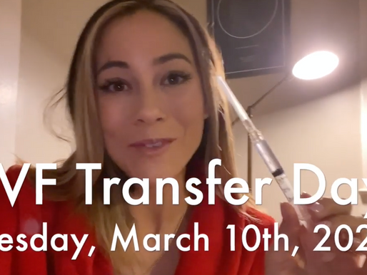 IVF Ep. 11: The day is here! BABY LEGG TRANSFER!
