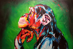 Singe / Ape