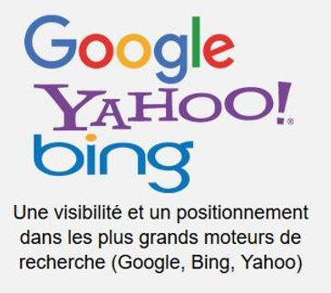 Visibilité_google.JPG