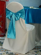 chair cover 3.jpg
